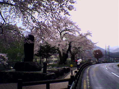 20060509_image1.jpg